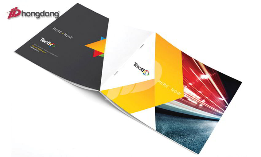Mẫu brochure 02