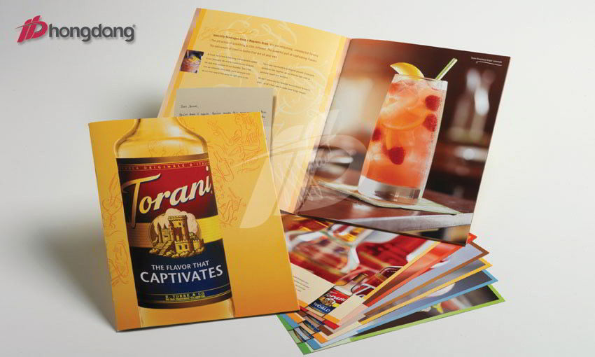 Mẫu brochure 04
