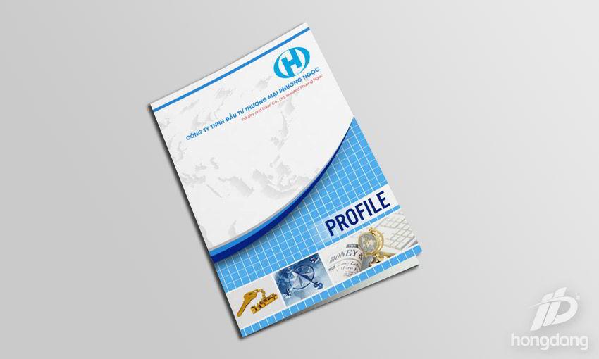mẫu profile - hồ sơ năng lực công ty