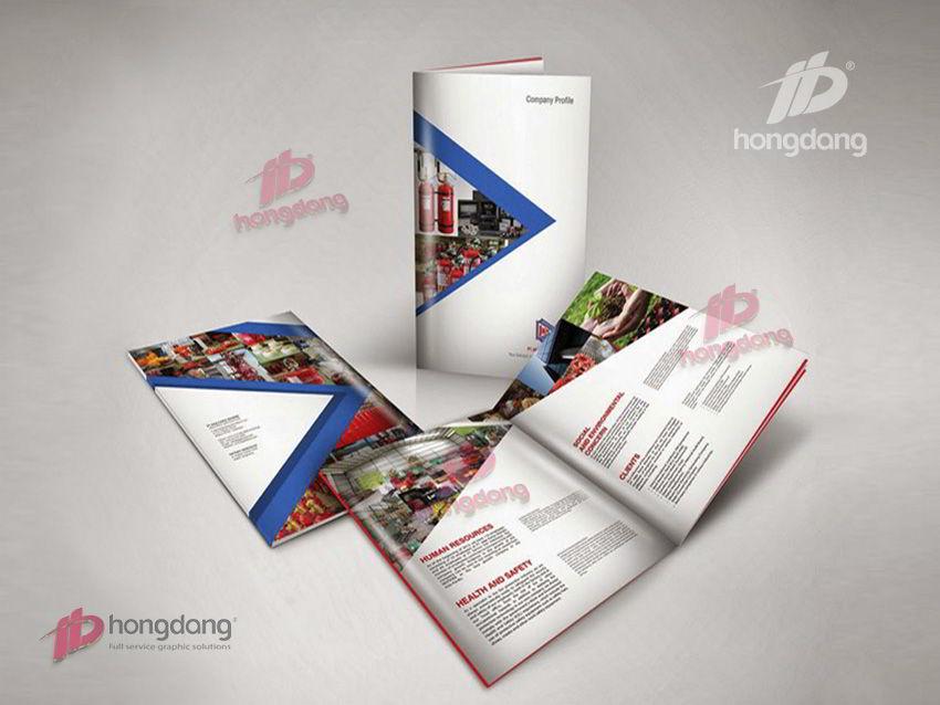 Đừng nhầm lẫn giữa profile, catalogue và brochure