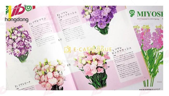 Thiết kế in catalogue shop hoa tươi đẹp mê hồn người